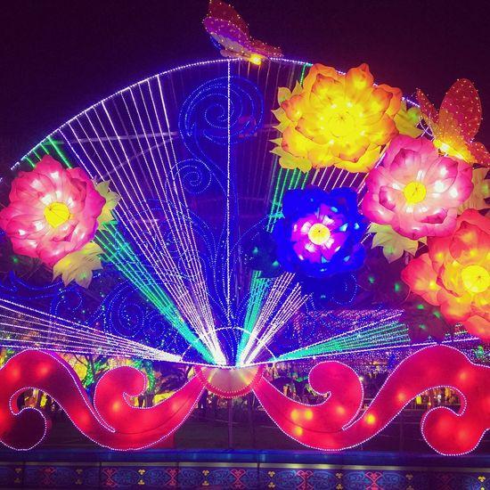 Fan Lanternfestival Lights Lights Of The World