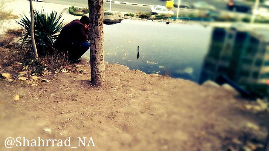 Shahrrad_NA Art