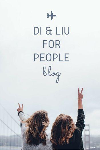 Blog Bloger Desing Di&liu By Logo People