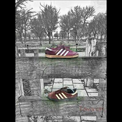 Adidastrefoil Adidas Adiart Adidasgallery Teamtrefoil Thebrandwiththreestripes Ramon085 Trefoilonmyfeet 3Stripes2soles1love 3Stripes Keepitcasual Yesadidas Adidashamburgmig Adidasmunchenspzl