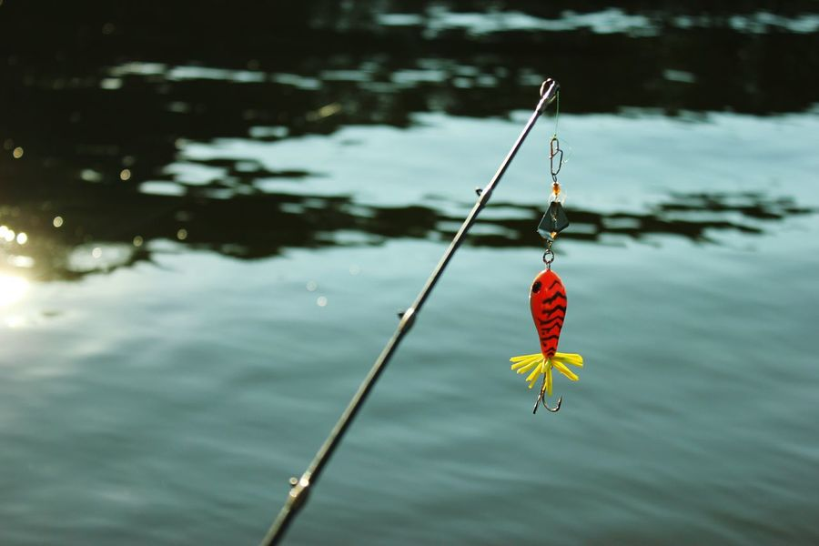 Water Outdoors Day Fishing Time Fish On! River Water Tranquility Close-up Nature Lake No People Outdoors Day