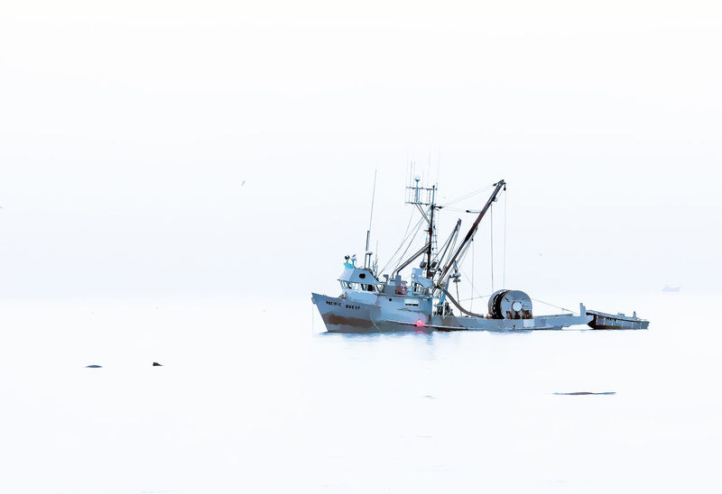 Herring Fleet Calm Water Cold Weather Fishboat Foggy Day Nautical Vessel Ocean Water