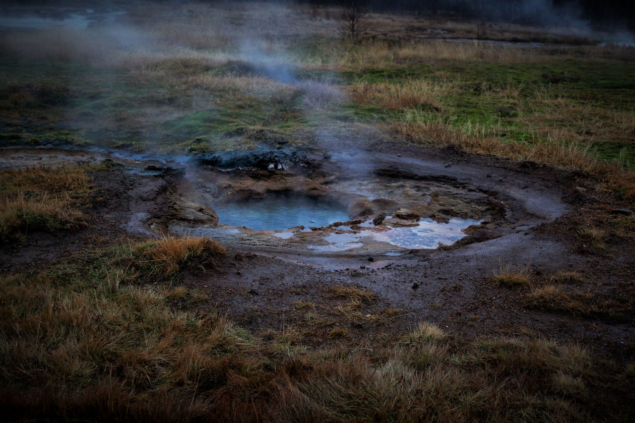 heat - temperature, water, nature, steam, smoke - physical structure, environment, grass, land, day, no people, plant, geyser, landscape, outdoors, hot spring, pollution, power in nature, geology, tranquility, air pollution