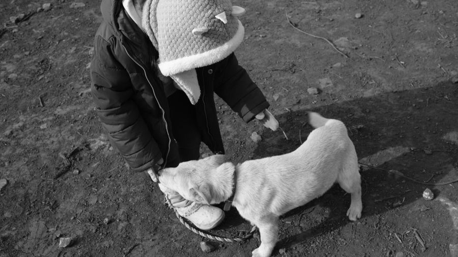 High angle view of woman standing with dog