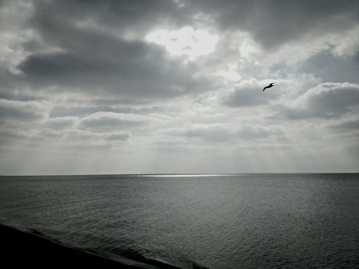 Sea And Sky First Eyeem Photo