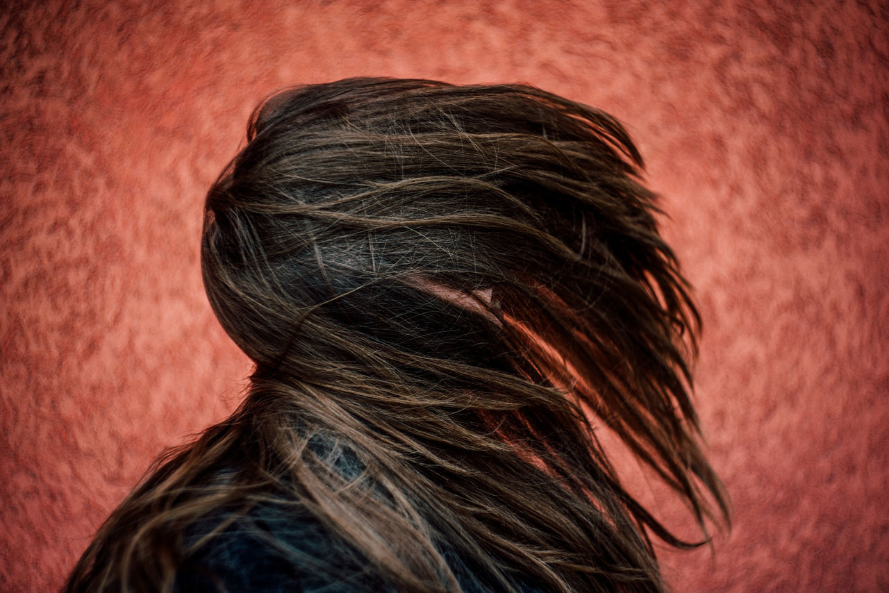 rear view, human hair, headshot, one person, real people, close-up, indoors, women, day, mammal, people