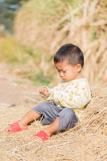 Boy sitting on dried grass
