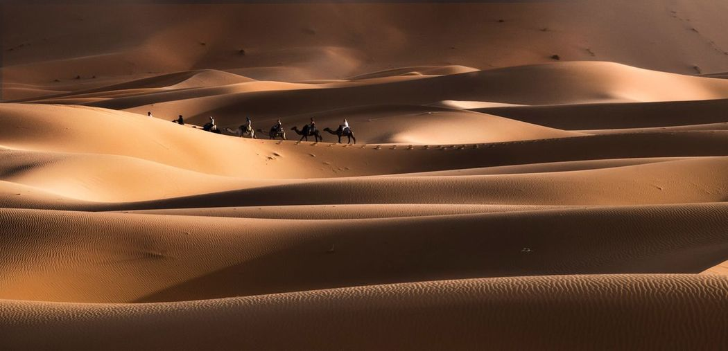 Morocco Tourism Vacations Traveling colour of life people and places People Of EyeEm Capture The Moment Desert Travel Photography Places I've Been Sahara Sand Land Landscape Sand Dune Scenics - Nature Environment Beauty In Nature People Nature Tranquility Travel