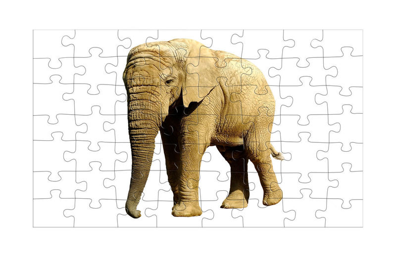 Indoors  No People Puzzle  Representation Still Life Number Full Length Solution Close-up Creativity Toy Challenge Art And Craft Studio Shot Business Elephant Paper