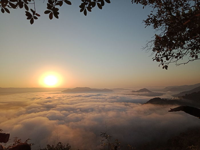 sunrise in the foggy beautiful aerial view Nature Aerial View View Thailand Nongkhai Outdoors Mist Landscape Astronomy Tree Sunset Mountain Sky Landscape Cloud - Sky Waterfront Lakeside Lake Sun Sunrise Sunbeam Silhouette Coot Foggy Shining Swan Calm Shore