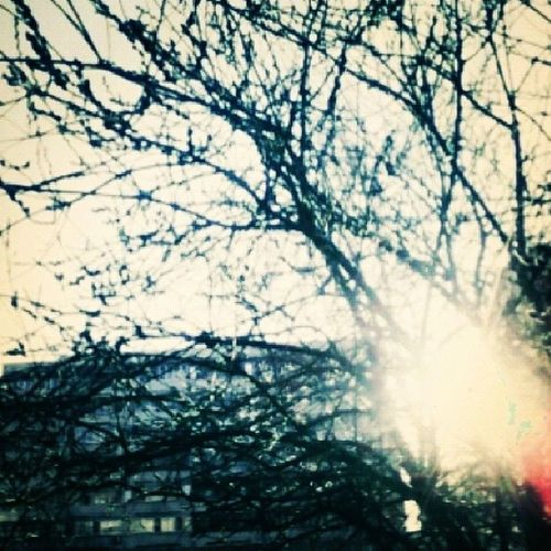 Весенние утро. весна утро прохладно МветитСолнце Красиво