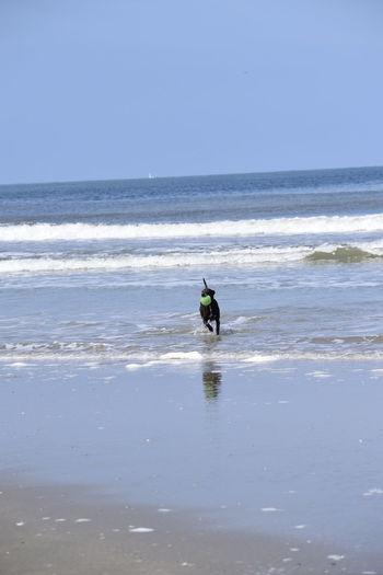 Sea Wave Beach