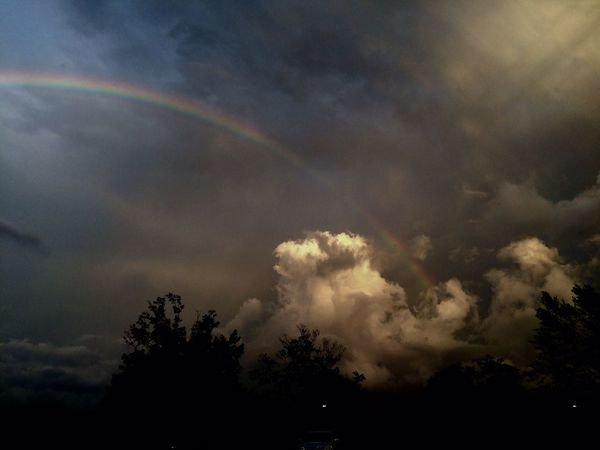 Stormbow Dramatic Sky EyeEmNewHere Storm Nature Beauty In Nature Tree Sky Weather Rainbow Cloud - Sky No People Scenics Outdoors Storm Cloud Silhouette Low Angle View Day EyeEmNewHere