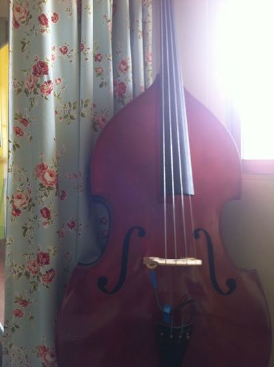 Arts Culture And Entertainment Bangkok Close-up Curtain Day Daylight Double Bass Indoors  Music Musical Instrument No Filter No People Thailnad