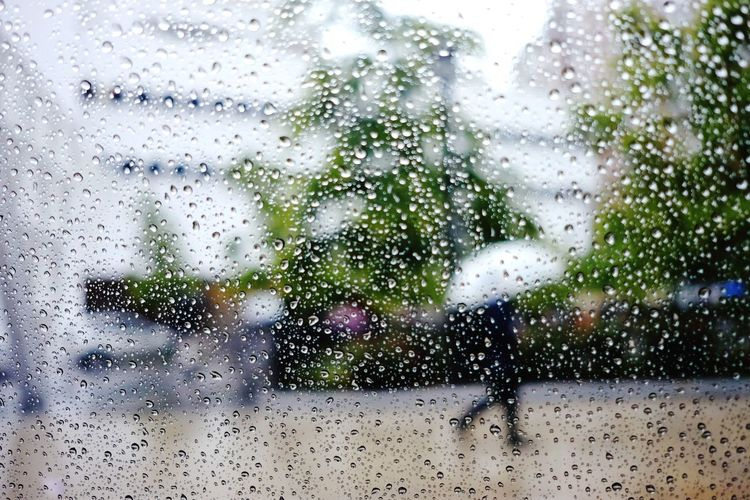 Rain Window City Nature Blurry Summer Showers Umbrella From A Car Window Raindrops City Life Street Photography