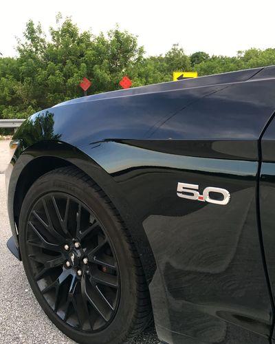 Quarter Panel Black Mustang GT