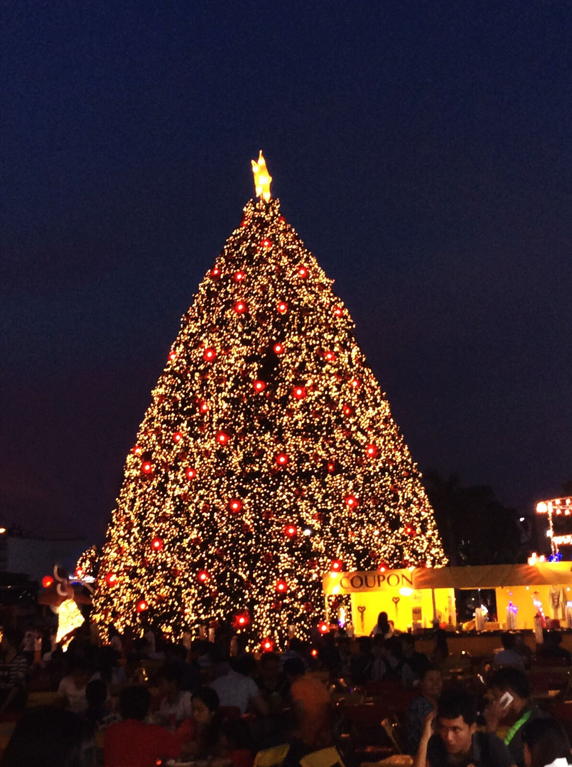 illuminated, night, celebration, large group of people, christmas, tradition, crowd, christmas decoration, traditional festival, cultures, decoration, lighting equipment, christmas tree, celebration event, event, christmas lights, sky, building exterior, low angle view, built structure