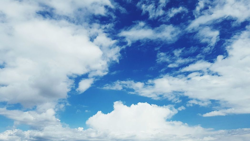 Cloud - Sky Nature Day Cloudscape Blue Sky No People Flying Outdoors Summer Beauty In Nature First Eyeem Photo