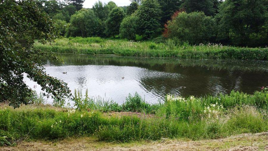 Lough Rynn, lake Lough Rynn