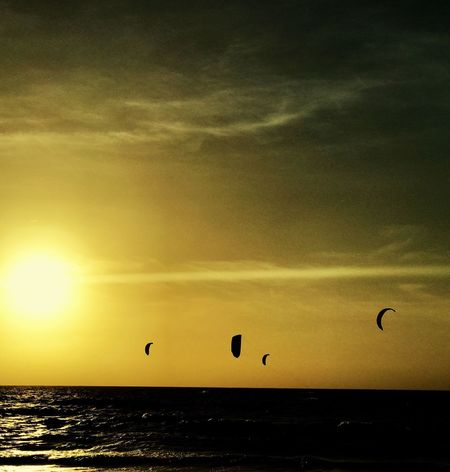 It is time to fly... Be. Ready. No Looking Back Sunset Sky Sea Horizon Over Water Nature Outdoors Mid-air Water Adventure Letting Go Glowing Sailing New Life End Of The Day