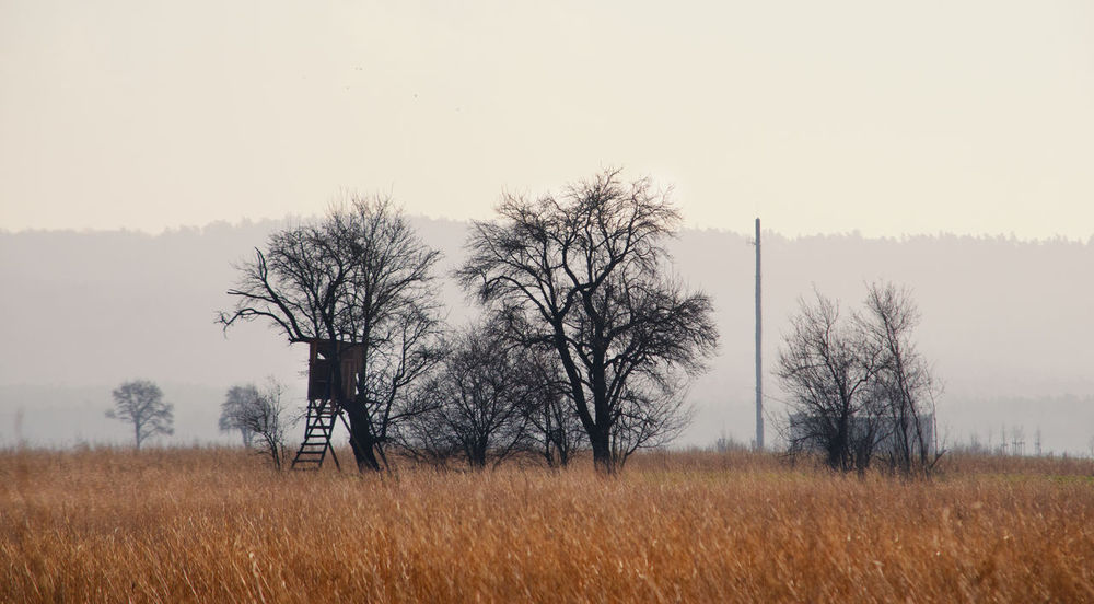 Landscape view to a high seat Country Field Nature Rural High Seat Hunter Seat Landscape Meadow Nature_collection No People Outdoors Rural Scene