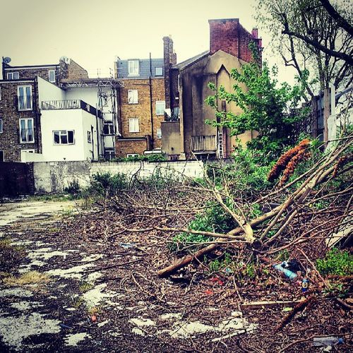 Vacant Vacantlot Vacantlots Backsofhouses houses row houses terraces surreyquays silwoodestate housing housingestate