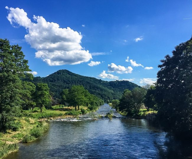 Green river 🏞💚 Green River Mountain Blackforest Schwarzwald Elz  Waldkirch ElztalWater Tranquil Scene Sky Tree Scenics Tranquility Beauty In Nature Waterfront Idyllic Blue Nature Cloud - Sky Non-urban Scene Mountain Range Countryside Cloud Day