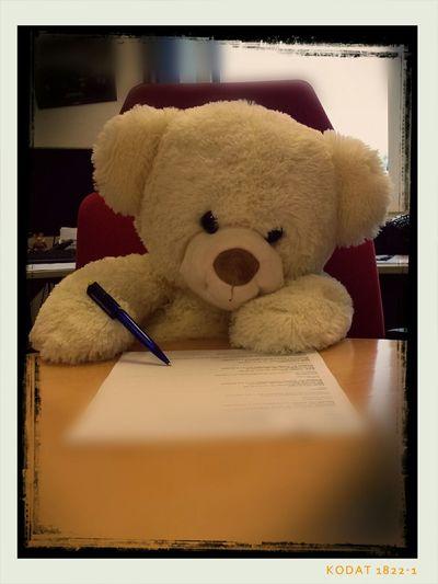Teddy Teddybear Teddy Bear Bear Writing Letters Missing You Bears
