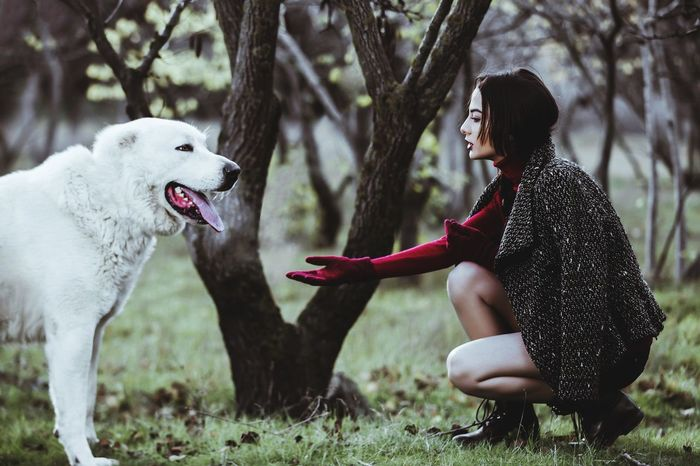 Dog and Girl Azerbaijan Eminmammadov Photography Dog Girl