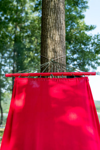 A corner of a red hammock hung from a tree Bright Clothing Display Front View Green Hammock Hanging Out Leisure Activity Nature Red Trees Tree Plant Trunk Tree Trunk Day No People Hanging Focus On Foreground Outdoors Selective Focus Close-up Land Low Angle View Holiday Growth Textile Celebration Forest