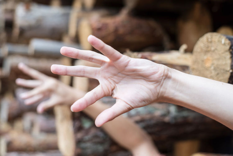 Cropped Hands Of Children Gesturing Amidst Logs