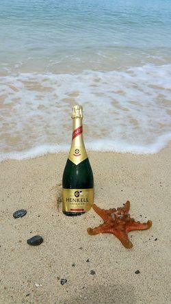 Drink with me Beach Winelovers  Bottle Sand Water Sea Outdoors Nature Drink Celebration The Week Of Eyeem Romblon Romblon PH Mimaropa Vacation Summer Wine Bottles Wine Wine Tasting Starfish  Seacreatures Done That.