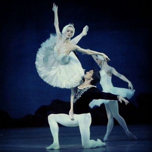 Swan Lake. Ulyana Lopatkina and Danila Korsuntsev. #swanlake #ballet #Petipa #Lopatkina #Odette #Odile #Siegfried #swan #dance #dancing #classical #theatre Theatre Ballet Swan Swanlake Classical Lopatkina Odile Odette Siegfried Petipa Dancing Dance