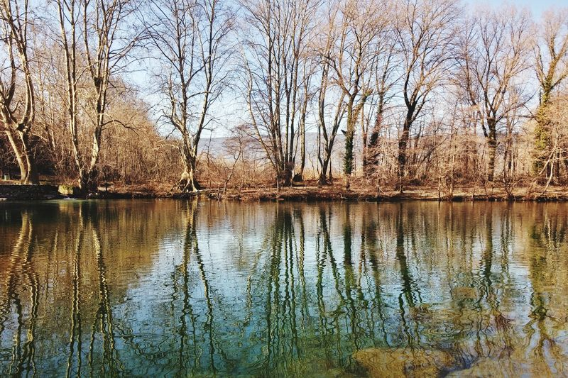 Water Reflections Relaxing Nature_collection Sunny Day
