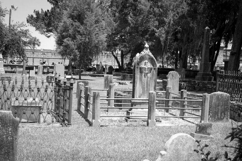 Graves Graveyard Graveyard Beauty Black And White St Augustine Florida Trees Fence EyeEm Black&white!