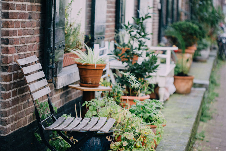 Wooden stool standing next to potted plants in street backyards in amsterdam, netherlands.