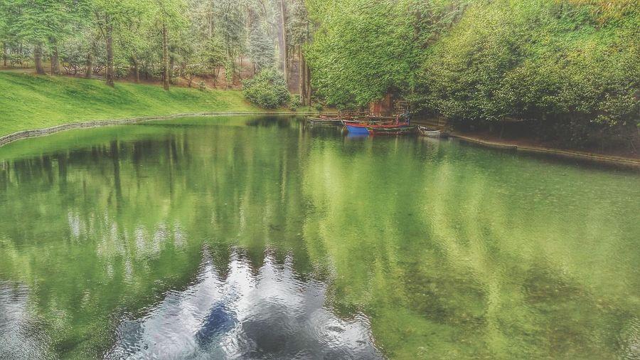Bom Jesus Park Lake Lake Outdoors Nature Landscape Braga Bomjesus Boats Green Water Trees