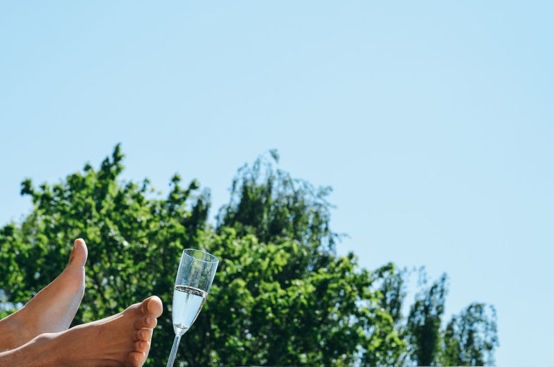 Low section of person by champagne flute against clear sky
