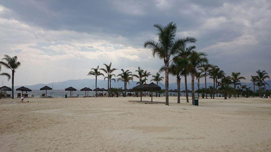 Beach Coast Beach Life Coconut Trees Summertime Summer Sand & Sea Coastal Beauty Beach time , beautiful life …