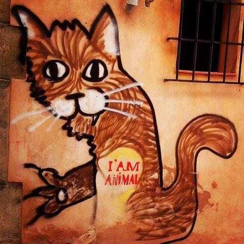 i am Animal! hilarious and make me feel Animal ahahaha, i love it! Loveit Streetart Muroart Graffiti SPAIN Feel Good Cuenca, Spain Wild Things Soy Animal