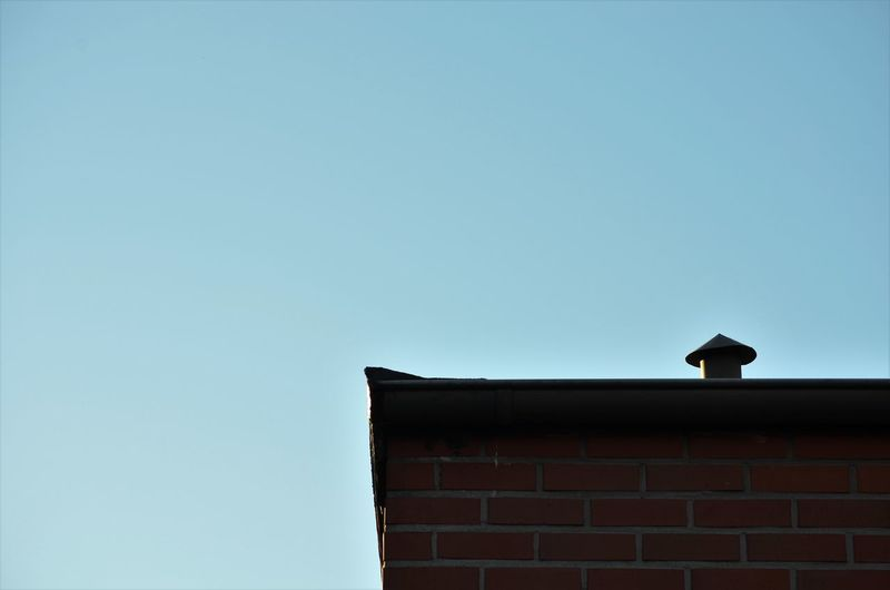 Low angle view of bird on wall against sky