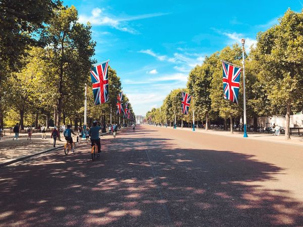 Britain Buckingham Palace London United Kingdom Sky Tree Plant Sunlight Cloud - Sky Nature Group Of People Day Crowd Outdoors Flag