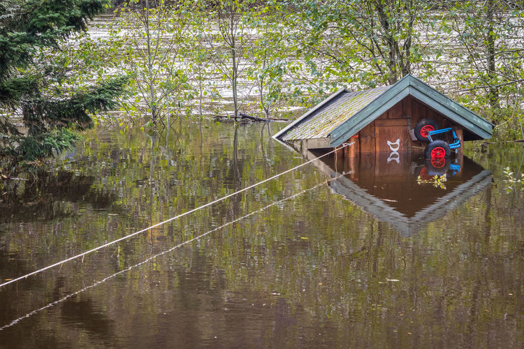 A small cabin standing under water in the flood in Tovdalselva Henhouse Roof Rope Under Water Animal Themes Beauty In Nature Ca In Chicken Coop Day Drowned Floating Flood Flooding Hut Lake Mammal Nature No People Outdoors Reflection Shed Tied Tree Water Waterfront