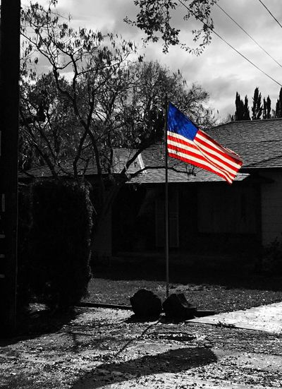 """Suburban America"" The American flag flies proudly in the front yard of a suburban home in Northern California. American American Flag America Suburbia Suburban Suburban Landscape Blackandwhite Black And White Blackandwhite Photography Selective Color"