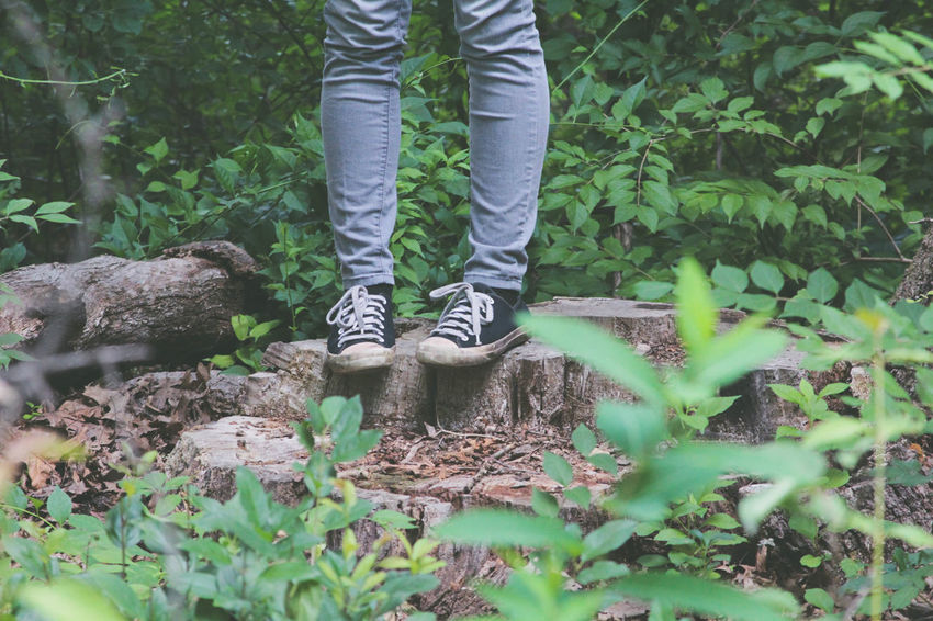Converse Casual Clothing Converse All Star Day Forest Growth Human Body Part Human Leg In The Woods Leaf Low Section Nature On The Edge One Person Outdoors People Plant Real People Shoes Standing Tree