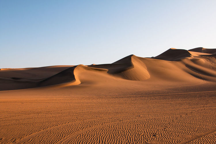 Desert Sand Dune Landscape Scenics - Nature Climate Arid Climate Sand Land Sky Environment Tranquil Scene Clear Sky Beauty In Nature Tranquility Non-urban Scene Nature Physical Geography Copy Space Day No People Outdoors Atmospheric Peru Huacachina EyeEmNewHere