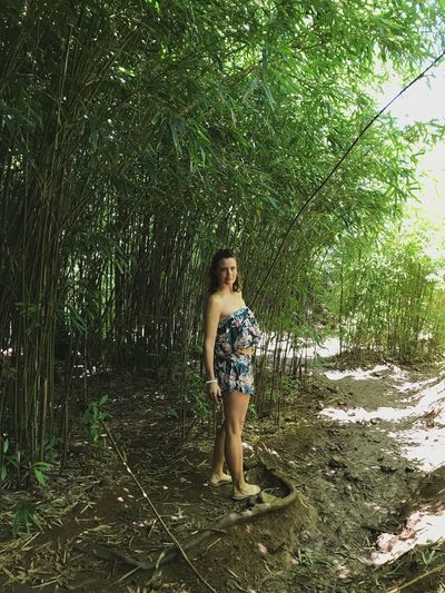 Bamboo Forest Tree One Person Full Length Young Adult Young Women Standing Only Women Adults Only Outdoors Hawaii Maui One Woman Only Looking At Camera Beautiful Woman Day Portrait People Adult Nature Beauty
