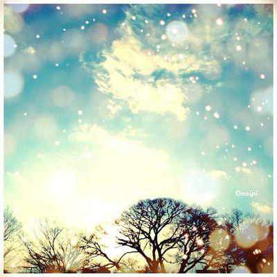 雪がチラチラ降ってたよ✨?⛄❄⛄❄?✨