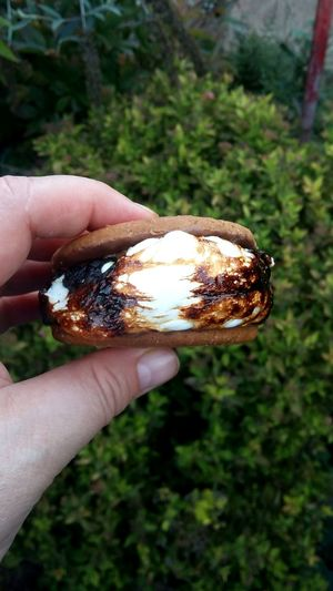 The ultimate s'more Human Hand Camping Marshmallow Dessert Chocolate