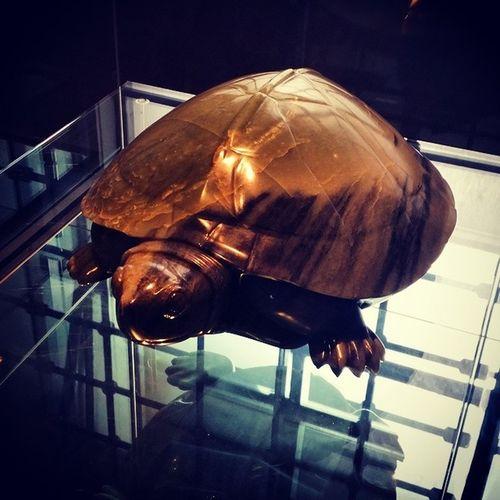 Jade turtle statue... I like turtles :D ? Jade Turtle Statue